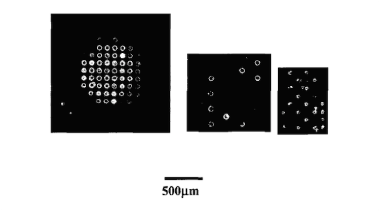 Low-contact-angle polydimethyl siloxane (PDMS) membranes for fabricating micro-bioarrays