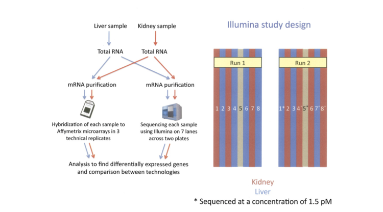 RNA-seq: an assessment of technical reproducibility and comparison with gene expression arrays