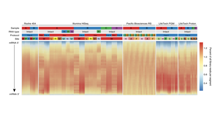 "Sheng Li et al., ""Multi-platform assessment of transcriptome profiling using RNA-seq in the ABRF next-generation sequencing study,"" Nature biotechnology, vol. 32, iss. 9, pp. 915-925, Sep 2014."